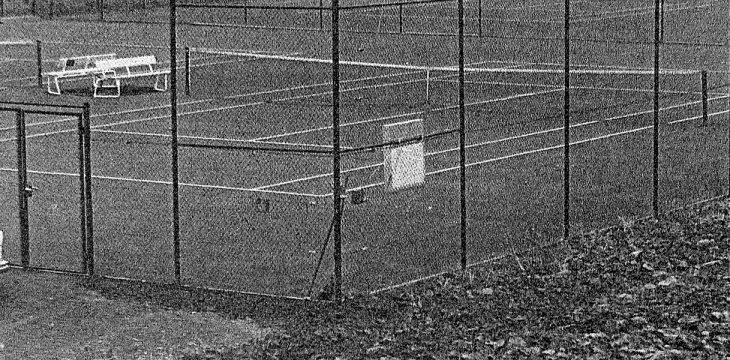 50 Jahre Angermunder Tennisclub